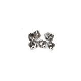 Stainless Steel Ear Screws