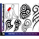 Pro Deltoid Tribals Flash Book #6