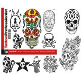 Pro Skulls for All Flash Book #8