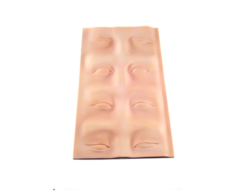 3-D Eye/Eyebrow Practice Canvas